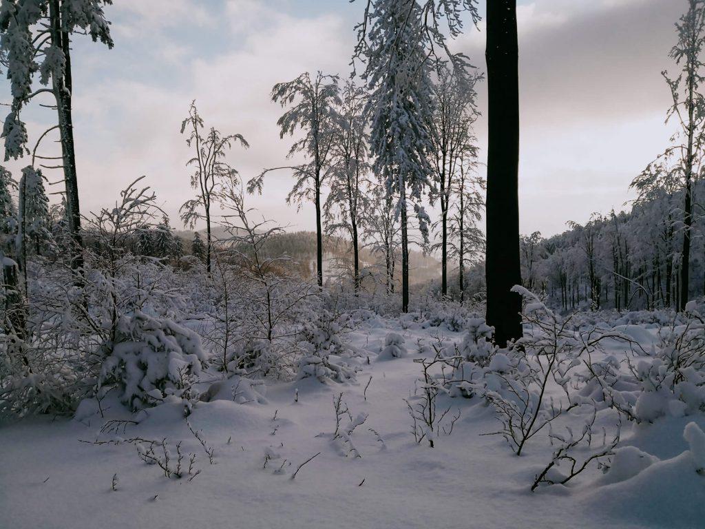 zachód słońca zimą