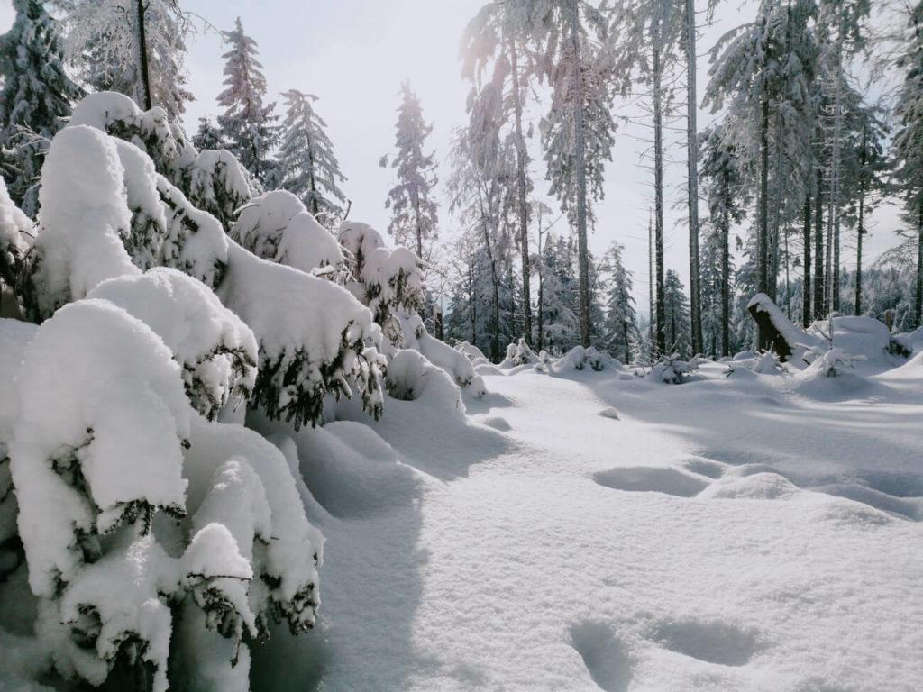 słońce zimą w górach