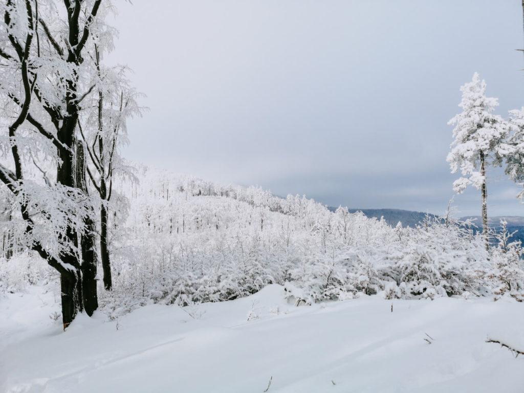 widok zimą w górach